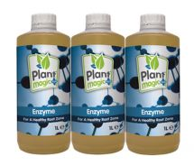 Enzyme-Prevents-Root-Rot-Plant-Magic